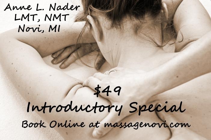 $49 introductory massage in Novi, MI